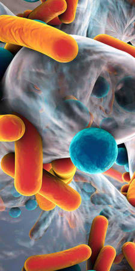 Manises presentará las novedades sobre tratamientos y diagnóstico de enfermedades infecciosas en una jornada multidisciplinar